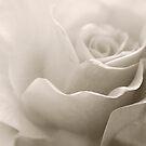 My Love Flows by KBritt