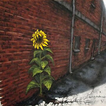 SonFlower Alley in Acrylics by NekarXenos
