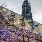 Gothic University Spring by Michael Matthews