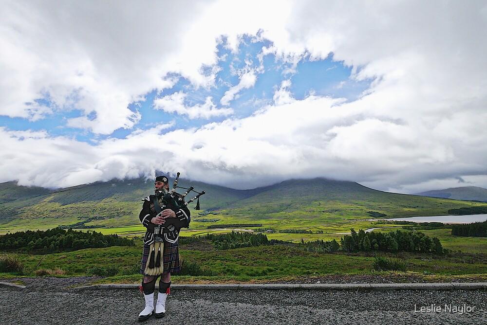 Piper, Glencoe by Leslie Naylor