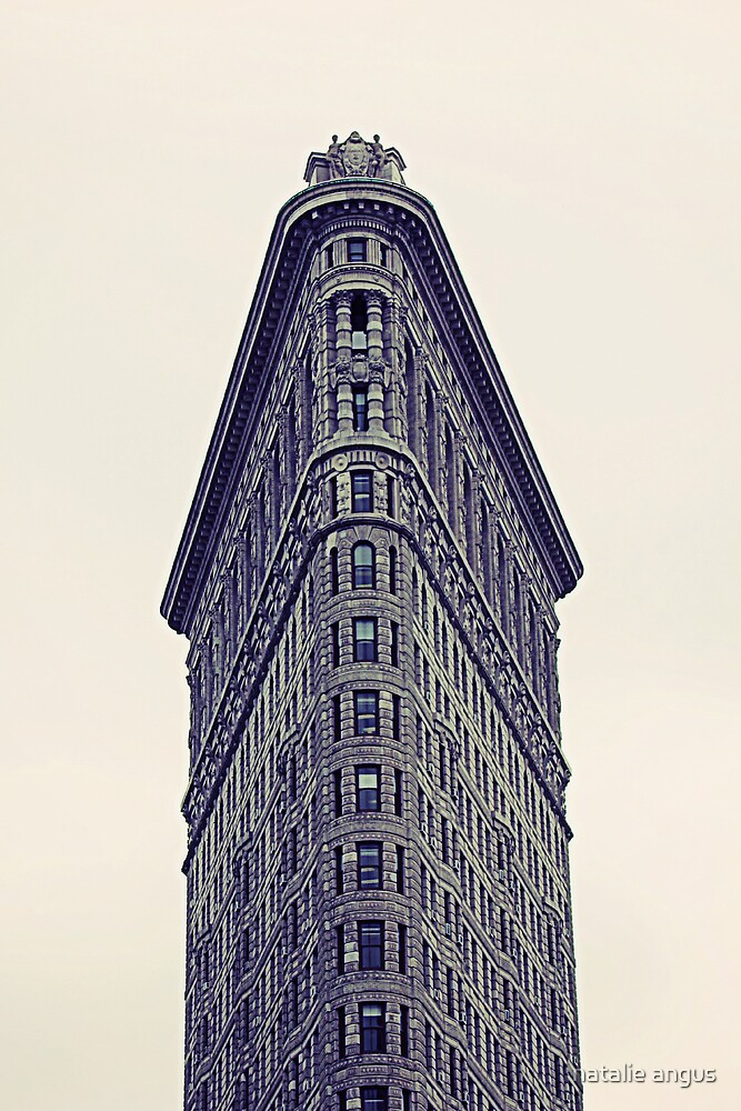 the infamous flatiron by natalie angus