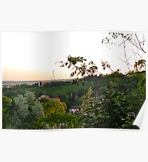 Prosecco Vineyards Poster