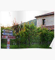 Valdobbiadene Vineyards Poster