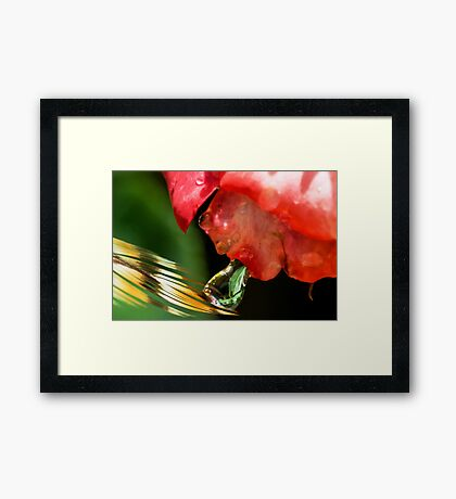 Alien Spitting on a Feather Framed Print