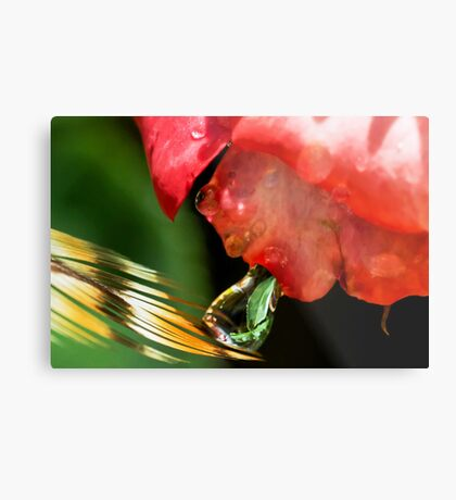 Alien Spitting on a Feather Metal Print