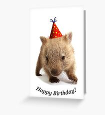 A wombat happy birthday. Grußkarte