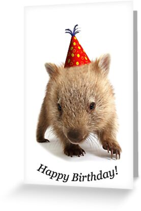 Quot A Wombat Happy Birthday Quot Greeting Cards By Gerry Pearce
