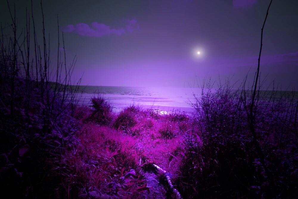 PURPLE HEAVEN by leonie7