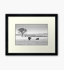 Snow scene with sheep Framed Print