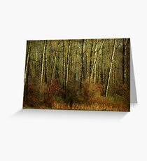 Fall Trees Greeting Card
