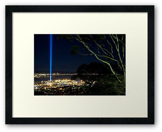 Spectra Tree - Hobart, Tasmania by clickedbynic