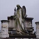 Angels looking down by Judy Woodman