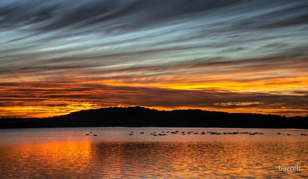 Swanning Around at Sunset by bazcelt