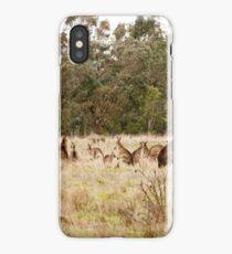 Troop of Kangaroos iPhone Case