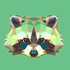 Raccoon Animals Gift by MrNicekat