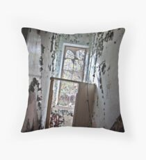 A Path To Freedom  Throw Pillow