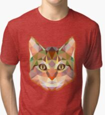Animals Cat Gift Tri-blend T-Shirt