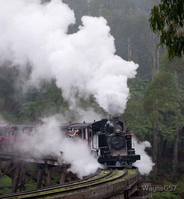 Coming Through the Fog by WayneG57