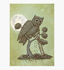 The Night Gardener Photographic Print