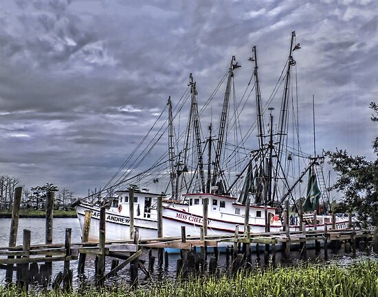 Shrimp Boats at Dock by Terry Shoemaker