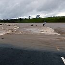 River Lune in Flood by mikebov