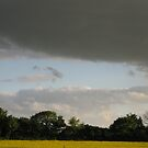 Leaden sky by KatDoodling