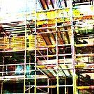 scaffold 19 by H J Field