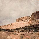 Antique Desert by R. Mike Jacobson