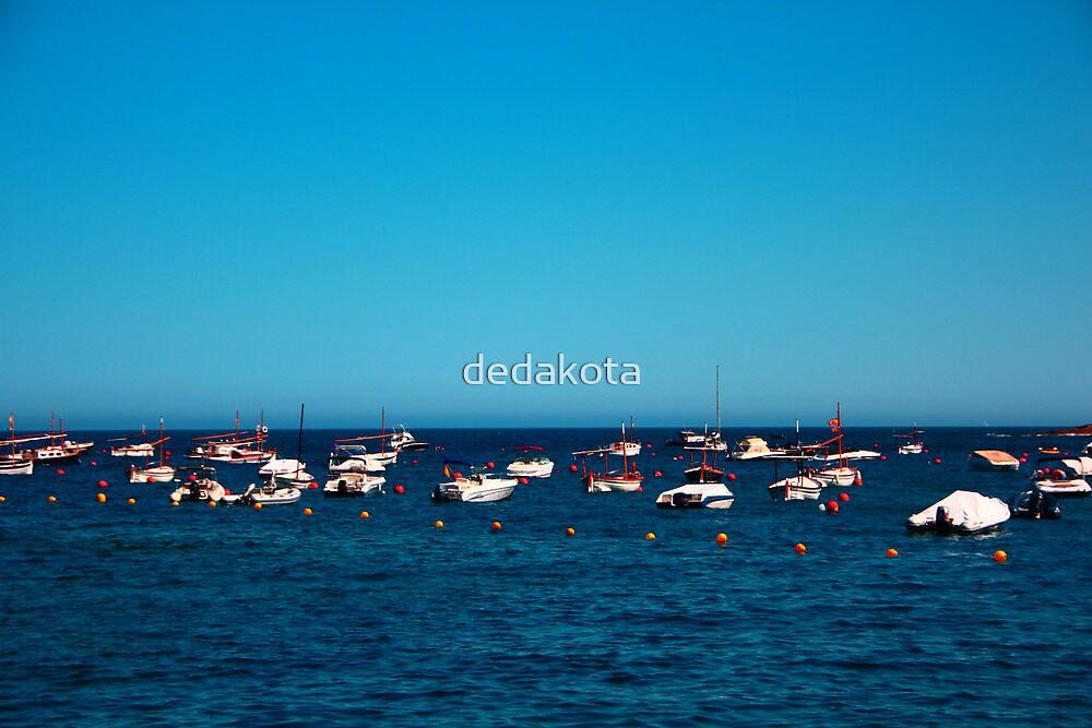shipping by dedakota