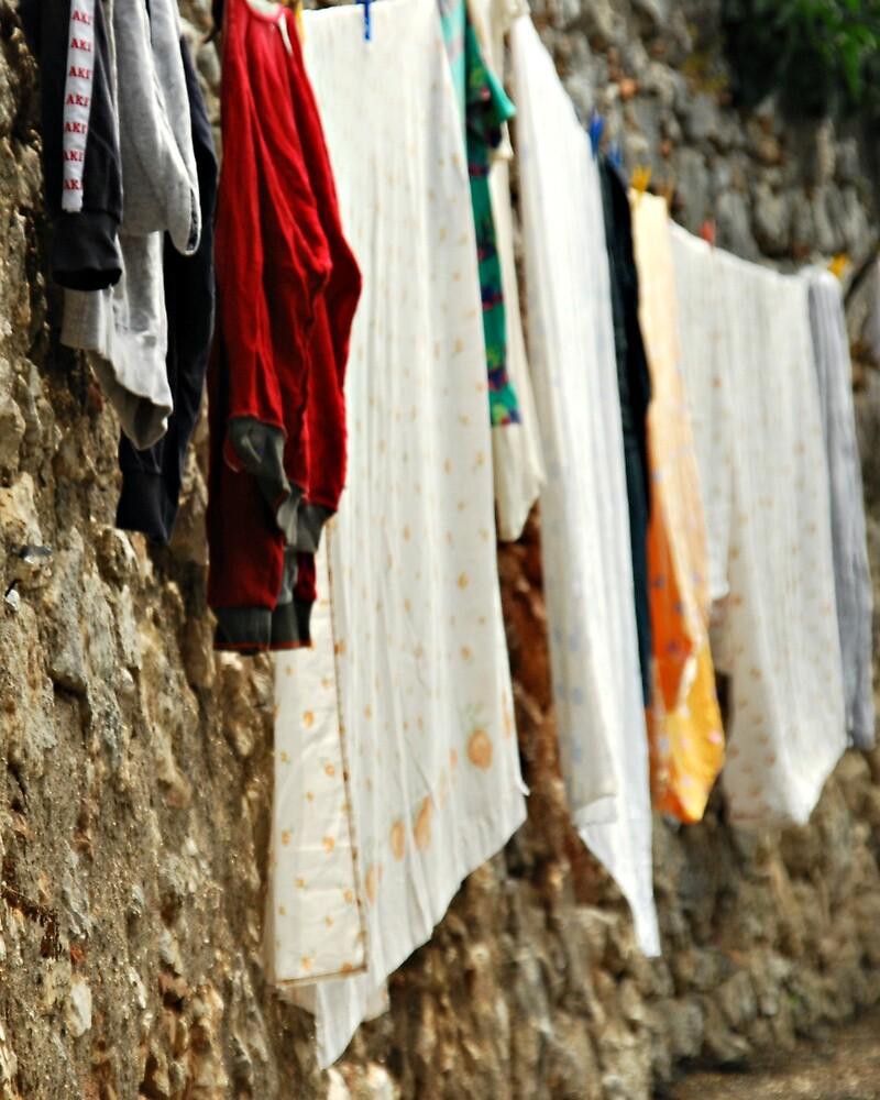 On a Stone Wall-Cesi, Italy by Deborah Downes