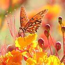 Bright Paradise by Olivia Plasencia