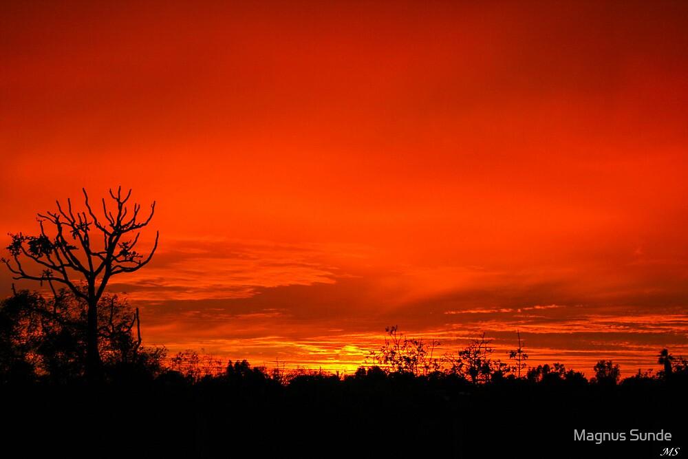 Pilbara Sun Rise by Magnus Sunde