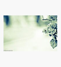 My heart is empty; clean and clear...Got Featured Work:) Photographic Print