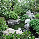Koi Pond, Balboa Park by ColdNorth
