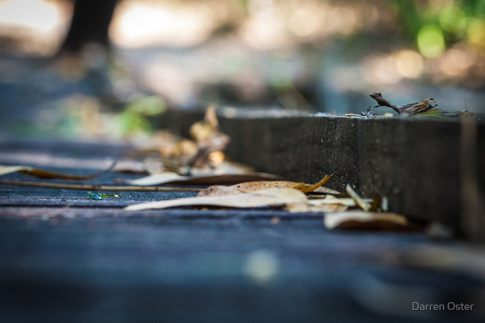 On the Boardwalk by Darren Oster