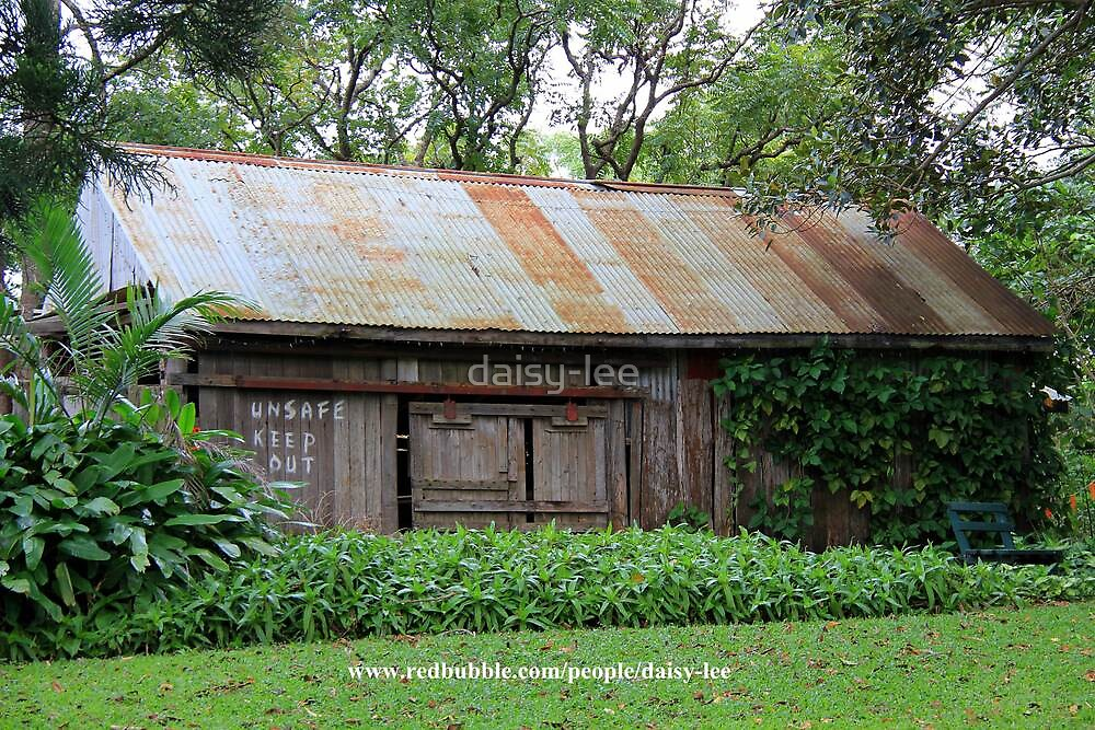 Shed by daisy-lee