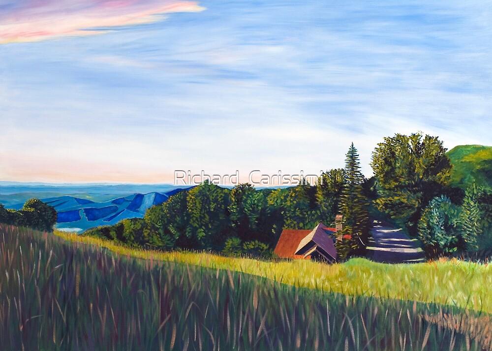 Skyland High Meadow by Richard  Carissimi