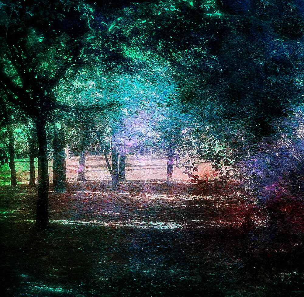 Woodlands by Mike Crawford