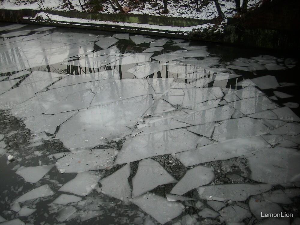 Ice Floe Mosaic by LemonLion