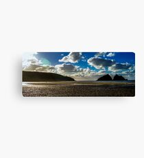 Lonely Beach Canvas Print