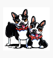Merry Gentlemen | Boston Terriers Photographic Print