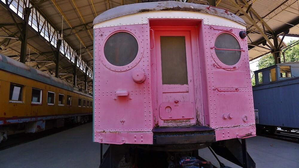 Pink  by Barbara Morrison