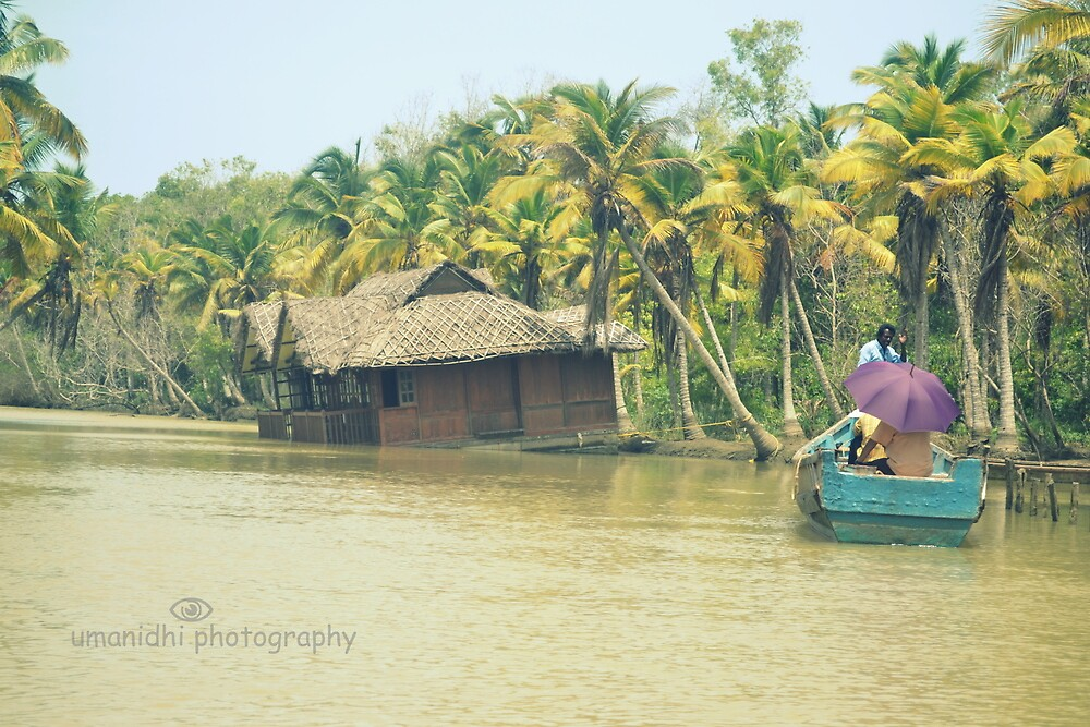 the landscape of Kerala by umanidhi