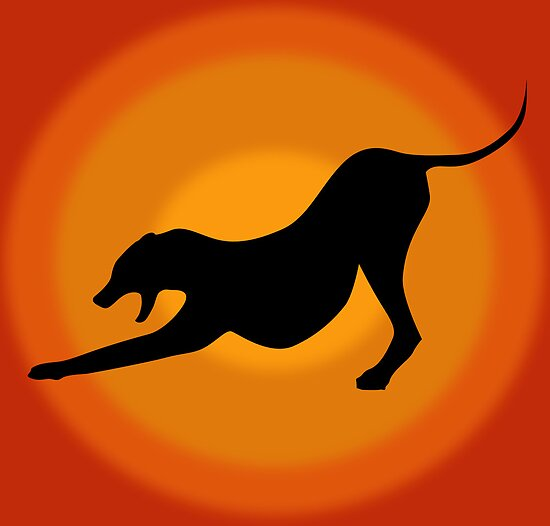 Silhouette of a Stretching and Yawning Dog on Orange Background by ibadishi
