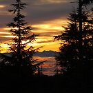 Sea and Sky Afire by Wolf Read