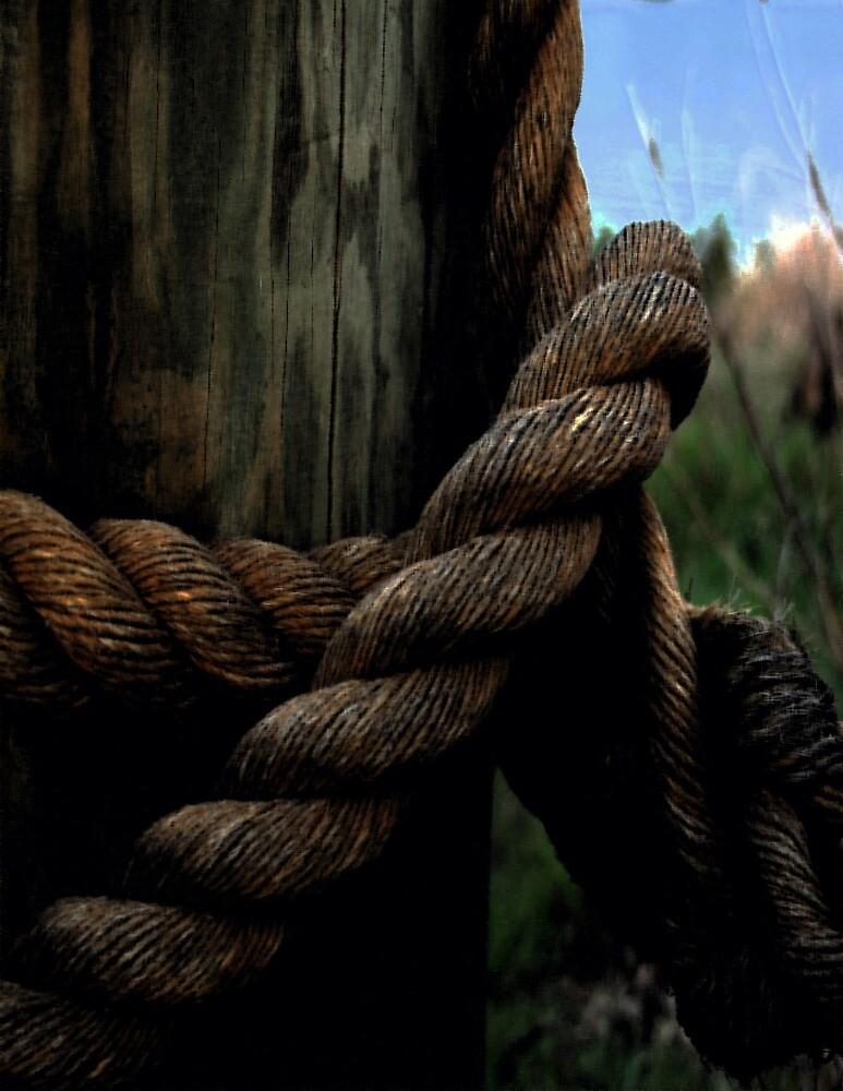 Sailor's Rope by Karen Harrison