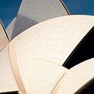 Sydney Sails by Stuart Robertson Reynolds