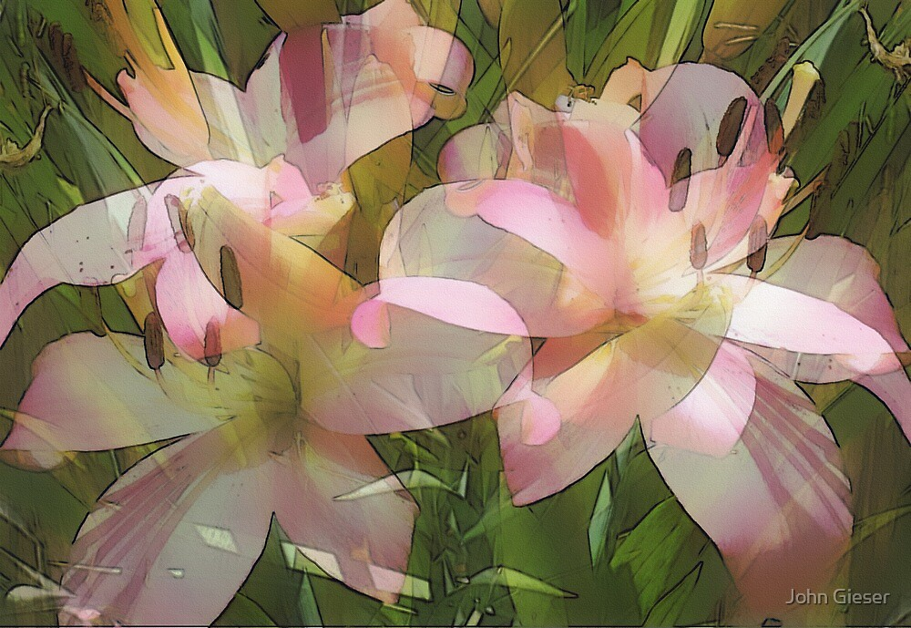 Lilies by John Gieser