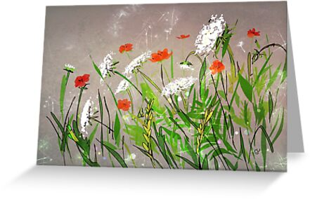 Queen Anne's Lace and Poppies by Suzanne Clements