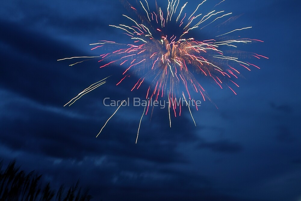 Evening of the Fireworks by Carol Bailey-White